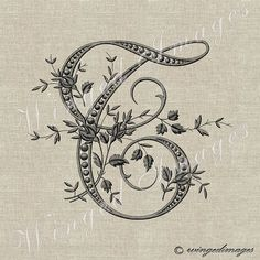 Antique French Rose Buds Monogram Letter E. Image Sheets size: 11 x high resolution 300 dpi, JPG and PNG fails Actual illustration size Paper Embroidery, Embroidery Patterns, Embroidery Monogram, Monogram Initials, Monogram Letters, French Alphabet, Download Digital, Alphabet Stencils, Original Gifts