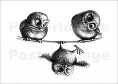 Three Owls - Freedom and Fun Canvas Print zeichnung, Three Owls - Freedom and Fun Leinwand Drucke Owl Tattoo Design, Tattoo Designs, Tattoo Ideas, Buho Tattoo, Tattoo Owl, Baby Owl Tattoos, Owl Tattoo Meaning, Illustration Mignonne, Funny Owls