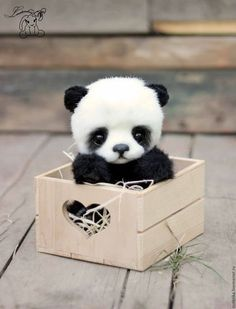 Who want a cute little panda ? ( To be honest I don't think that it is a really panda) Baby Animals Pictures, Cute Animal Pictures, Animals Images, Baby Pictures, Cute Puppies, Cute Dogs, Cute Babies, Cute Little Animals, Cute Funny Animals