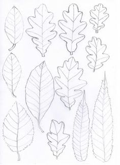 Thank God found these leaf templates make candle overs, fall, winter, and summer and Halloween, add these to you glass jar and deco with different season.
