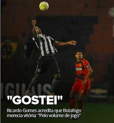 BotafogoDePrimeira: Ricardo Gomes acredita que Botafogo merecia vitóri...