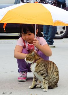 girl with cat and umbrella