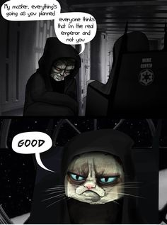The Plot For Episode Vii - Grumpy Cat