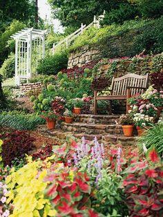 jardin sur une  pente sympa banc de bois fleur couleurs vives