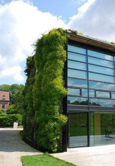 Murs végétaux | Vertical Garden Patrick Blanc