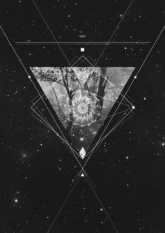 Forest #triangle