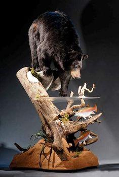 Taxidermy Decor, Taxidermy Display, Bird Taxidermy, Funny Taxidermy, Bear Mounts, Fish Mounts, Bobcat Mounts, Deer Hunting Decor, Deer Decor