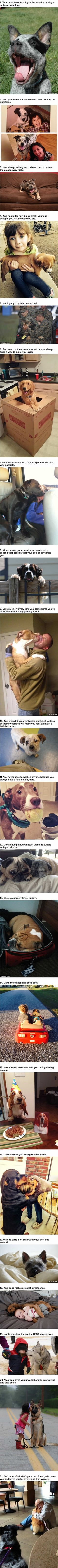 21 Reasons You Should Be Thankful For Your Dog