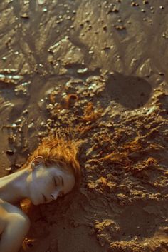 The far voices of the whales  - Marta Bevacqua