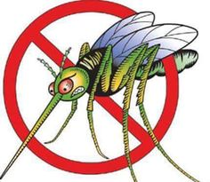 MOSQUITO YARD SPRAY  Big bottle Blue cheap mouthwash 3 cups of Epsom salt, 3 stale 12 oz cheap beer mix those three ingredients together until salt is dissolved. Spray anywhere you sit outside , around pools , will not harm plants or flowers...  Mosquitoes gone from that area for apprx. 80 days..  I spray my deck all around my sitting areas twice a summer. They leave that area you spray and will not come back.. Been using this mixture last 15 years.. It works..  Heard about this on a Paul…