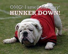 OMG I smell Monday! Hunker down! Love my UGA Dawgs :-)