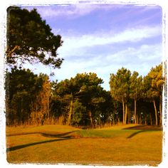 Carilo Golf