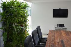 Uma bela sala de reuniões repleta de plantas!
