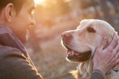 Mennesket og hunden har haft et fantastisk bånd i mindst 15.000 år. Alligevel kan det være svært for hundeejere at vise ægte kærlighed til hunden –...