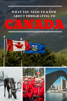 Moving To Canada, Canada Travel, Travel News, Travel Guides, Migrate To Canada, Moving Overseas, Packing To Move, Visit Canada, Need To Know