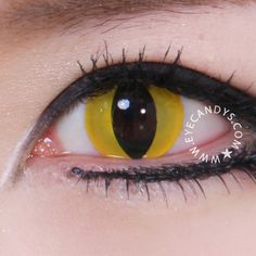 GEO Crazy Yellow Cat Eye Contact Lens from EyeCandy's. Saved to Cosmetic Colored Contacts & Circle Lens. Buy Cosplay, Cosplay Makeup, Cosplay Costumes, Cosplay Ideas, Costume Ideas, Costume Contact Lenses, Eye Contact Lenses, Halloween Contacts, Winged Liner