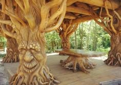 Totally amazing tree people