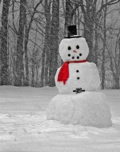 Dont miss the chance to build a snowman. There is a fun story at this site about the history of the snowman.