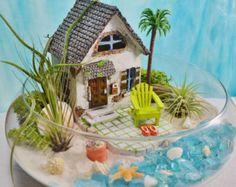 Tabla de surf terrario  globo de cristal mediano colgante Kit