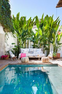 55 fastastic backyard landscaping ideas with minimalist swimming pool for your home 35 Small Backyard Pools, Small Pools, Swimming Pools Backyard, Swimming Pool Designs, Outdoor Pool, Backyard Landscaping, Outdoor Spaces, Outdoor Gardens, Tropical Landscaping