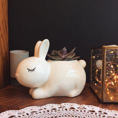 POT BUNNY, BLOOMINGVILLE — Stereo Fields Forever