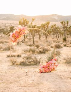 The bride rocked a fluffy pink wedding dress for this stunning elopement in Joshua Tree National Park! Mid-century modern style, pink and yellow flowers, a vintage thunderbird and stunning wedding photography made this wedding one for the books! #gws #greenweddingshoes #elopement #pinkweddingdress #palmsprings #midcenturymodern #elopementideas