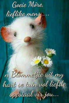 Thank You Images, Afrikaanse Quotes, Goeie More, Good Night Quotes, Good Morning Wishes, Morning Greeting, Birthday Wishes, Happy Birthday, Beautiful Pictures