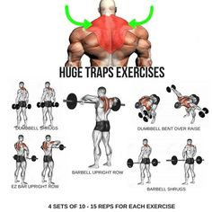 Huge Traps Workout step by step tutorial Huge Traps Workout step by step tutorial Fitness Workouts, Weight Training Workouts, Fitness Tips, Gym Training, Muscle Fitness, Gym Fitness, Health Fitness, Step Workout, Gym Workout Tips