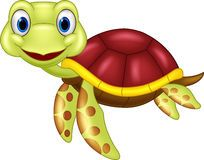 Cute Baby Turtle Cartoon - Download From Over 59 Million High Quality Stock Photos, Images, Vectors. Sign up for FREE today. Image: 43696967