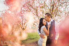 los angeles engagement ideas « Orange County Wedding Photographer   D. Park Photography