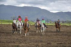 Clínica de equitación