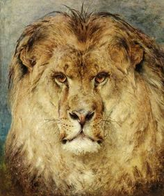 A Lions Head