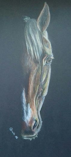 Horse face drawing from me Horse Face Drawing, My Arts, Horses, Drawings, Painting, Painting Art, Sketches, Paintings, Drawing