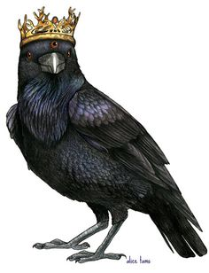 Three Eyed Raven in a Game of Thrones Crown A4 by birdsinhats
