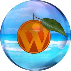 WordPress is similar