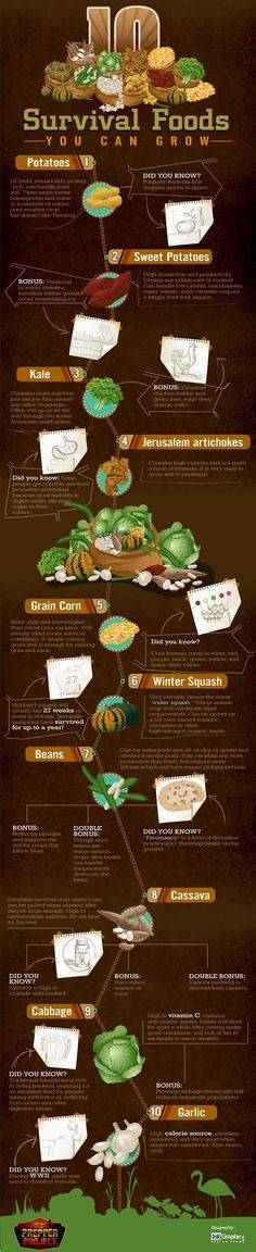 10 Survival Foods You Can Grow. I'm really reminded of old-school Victory Gardens!