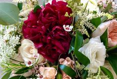 Peonies are large, fluffy, showy flowers with a subtle, sweet scent making them the perfect addition to bouquets. These dramatic blooms compliment any style of wedding or arrangement.Peonies are in season now till late June. A great flower for spring brides to incorporate into their bouquets. #didisflowers #bouquet #flowerfriday #peony #bride #married #bouqetinspo #love #beautiful #classic #romantic #lovely #dramatic #wedding #stunning #style #design #tobemarried #floraldesign #flowers Bridal Bouquets, Peony, Special Events, Compliments, Brides, Floral Design, June, Bloom, Romantic