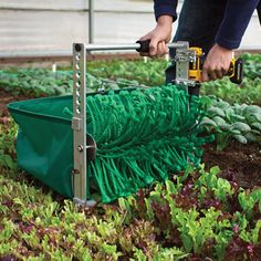"Try the Quick-Cut Greens Harvester which ""mows"" delicate greens drastically cutting harvest time  - Organic Gardening - MOTHER EARTH NEWS"