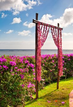 what caught my eye on this is the idea of rather than a typical round top wire arbor, what about doing something like this, with fabric draped, pulled back, sort of framing G+L  ????   I know thats a long way from this tropical scene, but I hope you get where I was headed.  :-)
