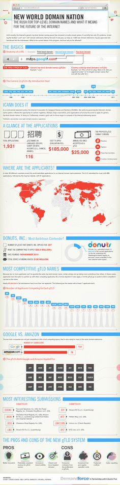 New World Domain Nation: The Rush for Top-Level Domain Names and What It Means for the Future of the Internet