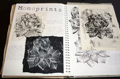Art Sketchbook - an exploration of natural form through mono printing; art student portfolio // Katie Grimes