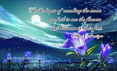 In the hopes of reaching the moon, men fail to see the flowers that blossom at their feet. - Albert Schweitzer