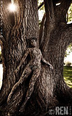 Tree Body Painting