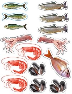 _g_poissons