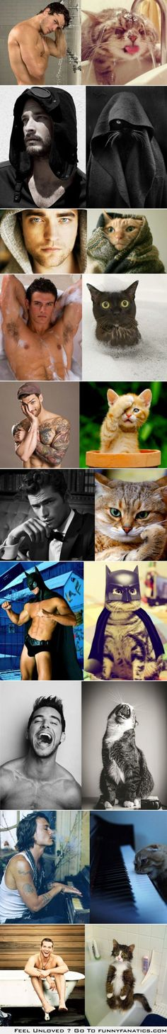 """I am laughing so hard right now because the third picture down is Robert Pattinson and his look a like cat, obviously. But then I just thought """"...Robert Cattinson."""""""