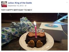 Julius celebrated his birthday with a special treat from PAWsitively Sweet Bakery.