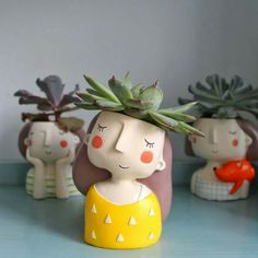face pots with succulents