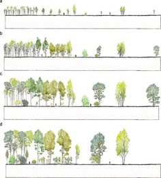 LANDSCAPE ARCHITECTURE                                                                                                                                                                                 More