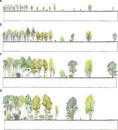 LANDSCAPE ARCHITECTURE                                                                                                                                                                                 More
