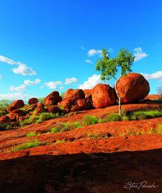 Travel In Australia Alone Tasmania, Western Australia, Australia Travel, South Australia, Places To Travel, Places To See, Outback Australia, Landscape Photography, Nature Photography